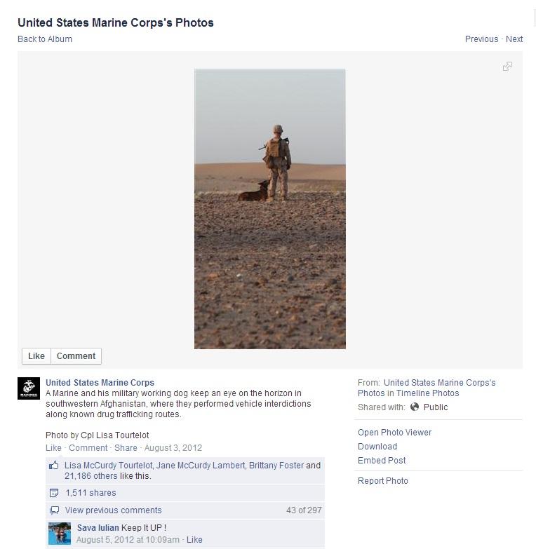 MWD USMC FB 20120805
